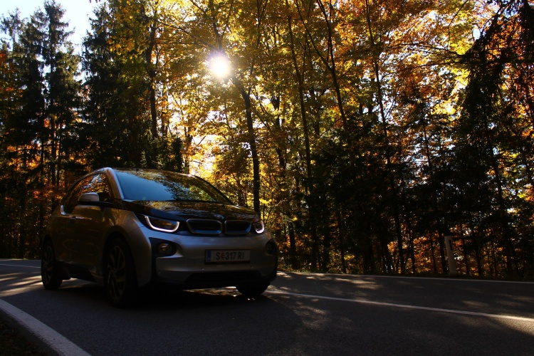 bmw-driving-in-forest
