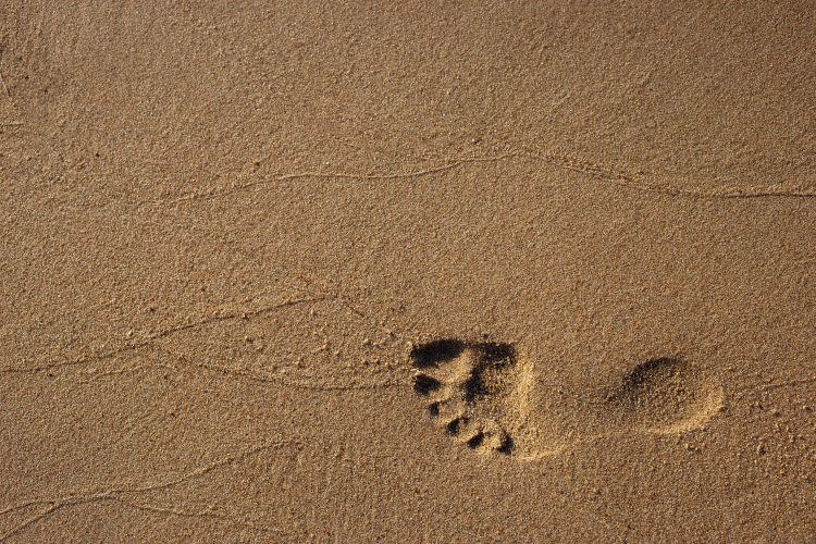 footprint-on-sand-1527828.jpg